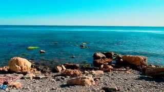 Смотреть видео дики пляж video