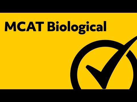 Best MCAT Biology Study Guide