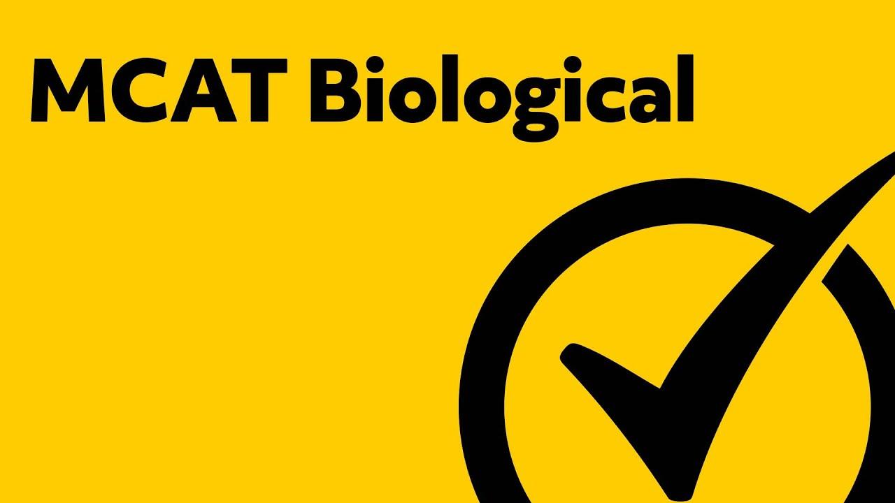MCAT® Study Guide | Free MCAT® Practice Test