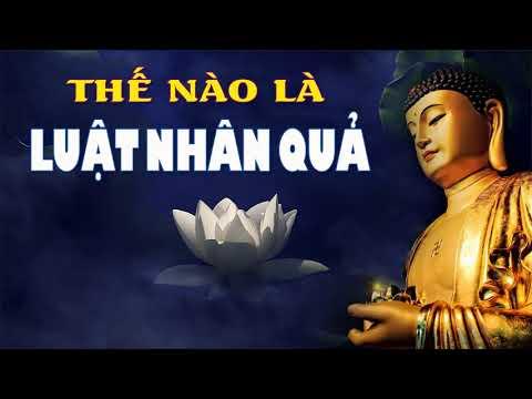 Luật Nhân Quả Là Gì – Cùng Nghe Những Lời Phật Dạy Để An Vui Hạnh Phúc – Phật Pháp Nhiệm Màu
