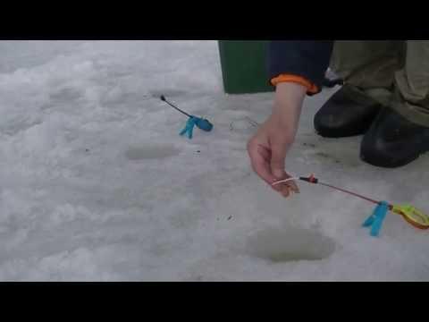 рыбалка на река сиг