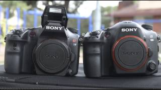 Sony Alpha A99 vs A77
