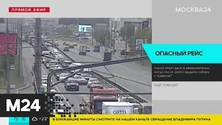 Водителям рекомендовали избегать поездок в центр Москвы - Москва 24