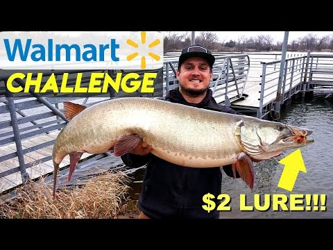 $2 Walmart Lure Catches FISH OF A LIFETIME!!! (Walmart Challenge)