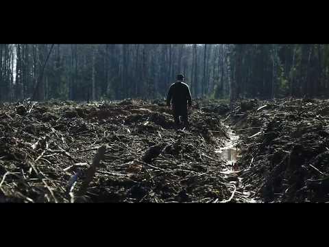 PLYNI KIRTIMAI - kas paliko iš Lietuvos miškų? GYVAS MIŠKAS