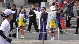 大阪マラソン2017応援11月26日(日)大阪市中央公会堂前にて.