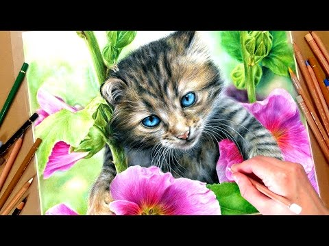 realistic-kitten-in-coloured-pencil-tutorial-+-free-reference-photos!