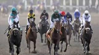 Zenyatta Win The Breeders' Cup Classic Horse Race Nov 7, 2009!!