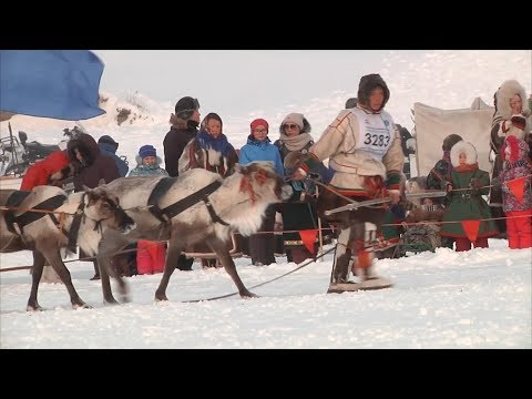 Сеяхинские пастухи и