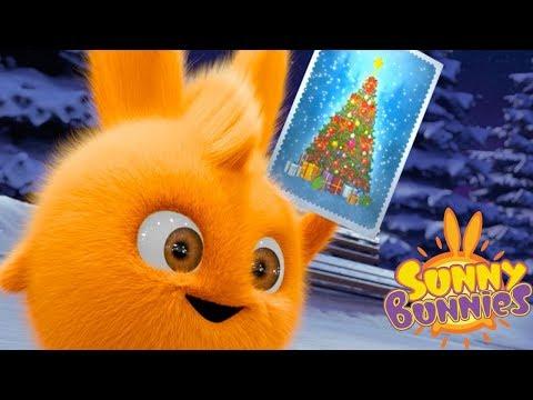 Cartoons for Children | Sunny Bunnies - CHRISTMAS TREE | Funny Cartoons For Children
