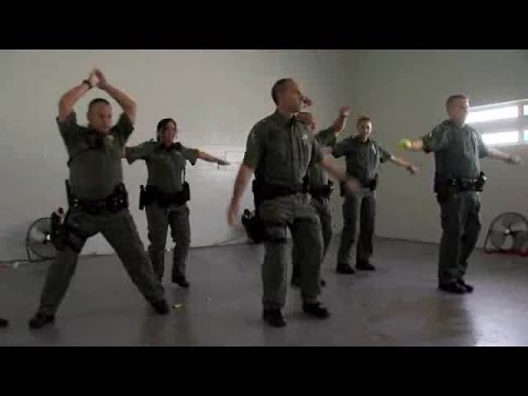 Fla. deputies perform 'Thriller' dance for terminally ill 7-year-old