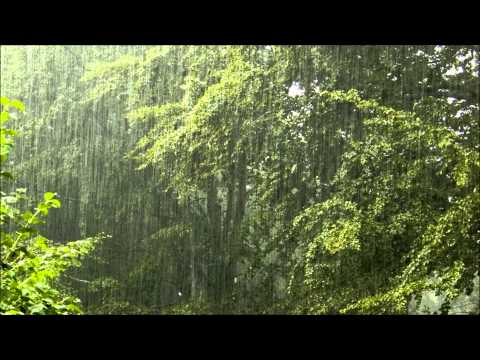 Torrential rain - relaxing rain with nature sounds