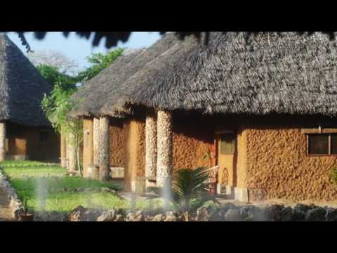 Tishi's Farm, Kenyan Bio Farm