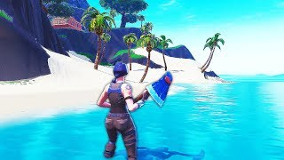 GLITCH (C) ALLER on a FORTNITE's SECRET ISLAND!!