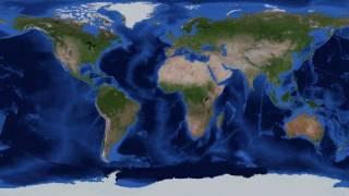 Изменение климата и миграции животных (рассказывает Алексей Кокорин)