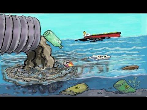 بحث عن تلوث المياه Youtube