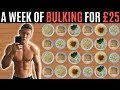 A WEEK OF BULKING FOR   25   Meal Prep on a Budget