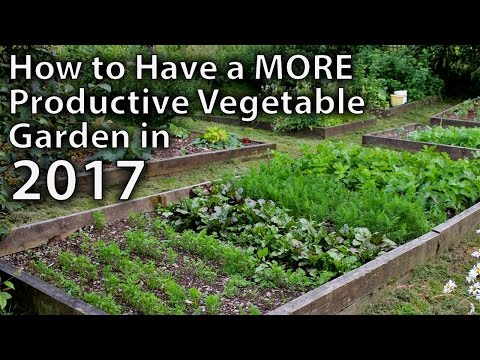 10 Ways to Make your Vegetable Garden More Productive in 2017...and Beyond!