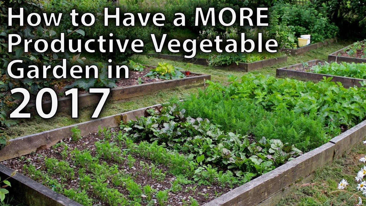 10 ways to make your vegetable garden more productive in 2017