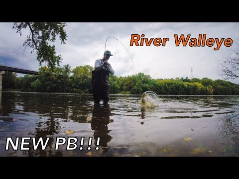 Fall Walleye On The Mississippi River | NEW PB!!!