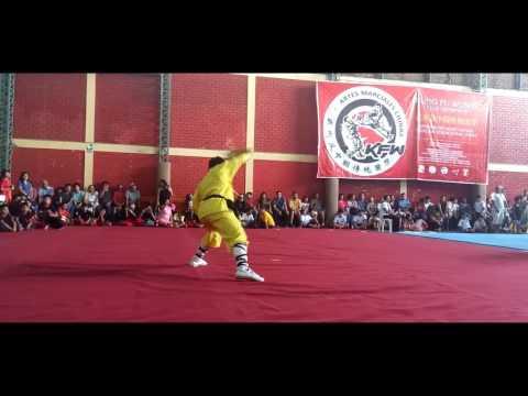 Campeonato de Artes Marciales Chinas 2016