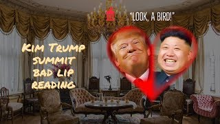 Kim Trump SUMMIT bad lip reading