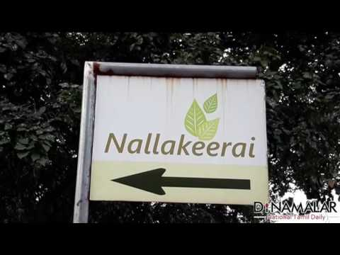 Nature farming in Chennai