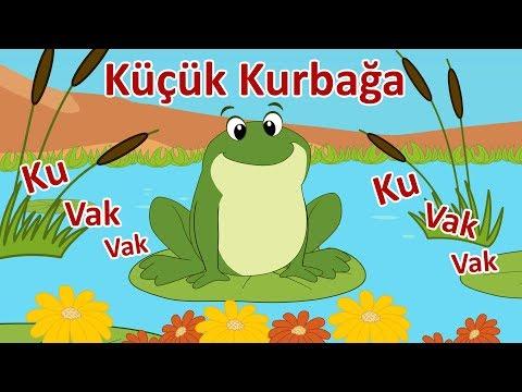 Küçük Kurbağa - Ku Vak Vak Vak