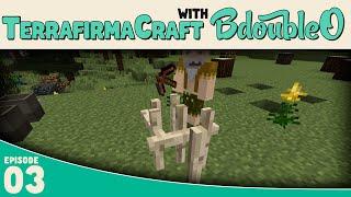 Minecraft Terrafirmacraft :: Better Than Microblocks!!! :: E3