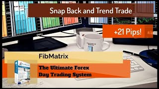 02 24 2020 Fully Auto Snap Back and 1m Trend  +20 Pips Growth Target Hit Live Forex Trading Room