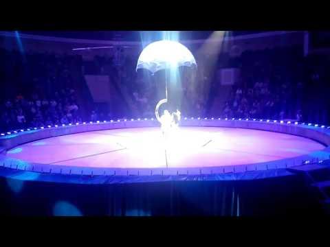 Вчера 19.04.2017 в Минском цирке сорвалась воздушная гимнастка