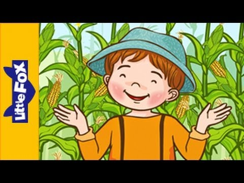 Jimmy Crack Corn   Song for Kids by Little Fox