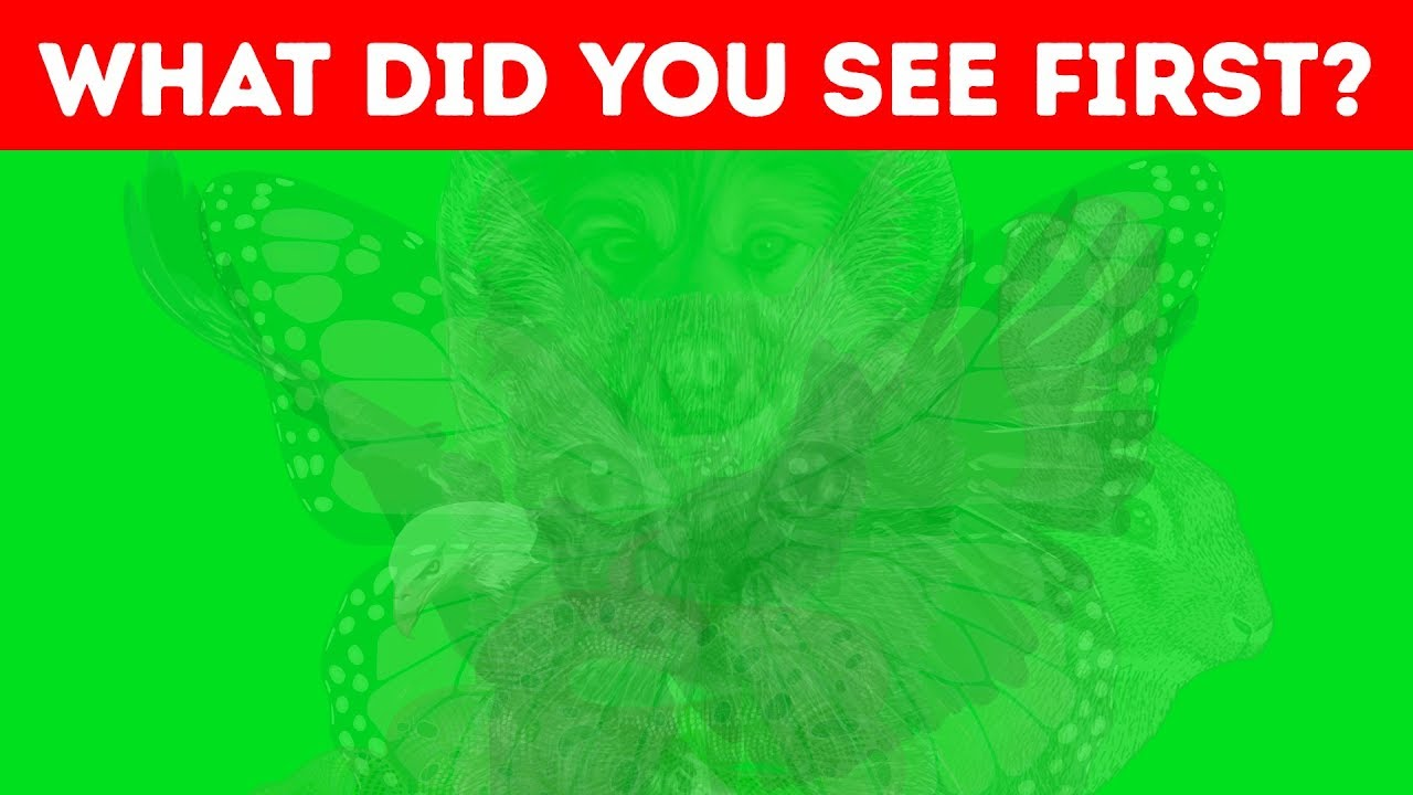 the-first-animal-you-see-reveals-a-lot-about-your-personality