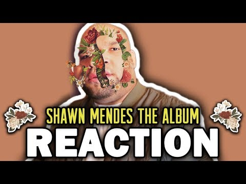 Shawn Mendes The   REACTION