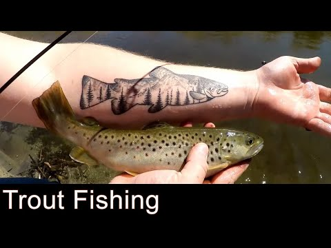 Great Trout Fishing On The Owen's River