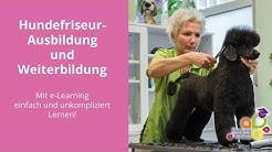 Promo Video - AUSBILDUNG zum HUNDEFRISEUR mit Margit Schönauer