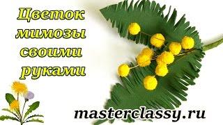 Foam flowers tutorial. Цветок мимозы своими руками: видео урок. Как сделать цветы из фоамирана