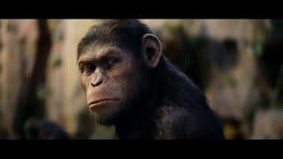 اعلان فيلم القرد المتكلم سيزار