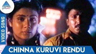Chellakannu (1995) Tamil Movie Songs | Chinna Kuruvi Rendu Video Song | SPB | K S Chitra | Deva