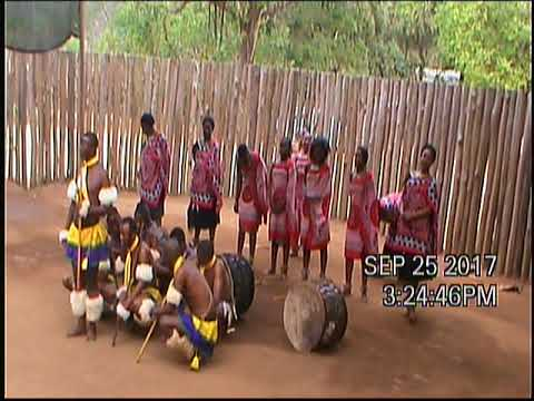 2017-9 Africa,Namibia,Lesotho,Swaziland,Mozambique DVD 222506 4