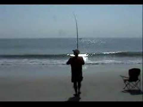 Surf fishing bluefish run off the coast fo sc youtube for Myrtle beach surf fishing
