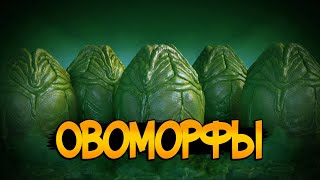 Всё об Овоморфах из фильмов Чужой / Чужие
