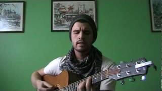 Leave - Glen Hansard (Hey Alexander Cover with Chords!)