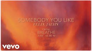 Felix Jaehn - Somebody You Like (Visualizer)