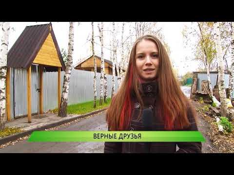 """Служба новостей """"Город"""" от 10.10.2019"""