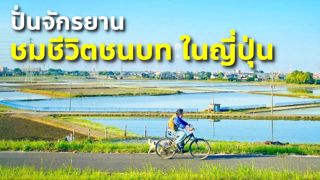 ชีวิตในญี่ปุ่น EP 10 ปั่นจักรยานดูวิถีชีวิตคน ชมทุ่งป๊อปปี้ใหญ่สุดในญี่ปุ่น แวะดูศูนย์กีฬาในชุมชน