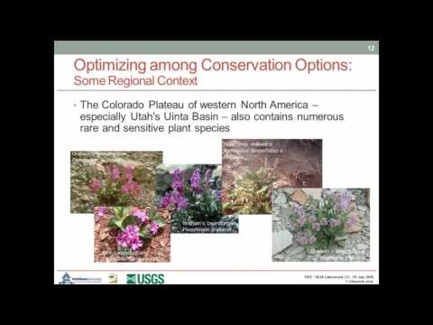 Sensitive & rare plant distributions and energy development in the Colorado Plateau region