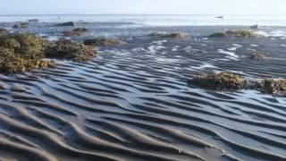 Кий остров (Маленький остров Белого моря)(Стихи, музыка, исполнение Владимир Петров, Фотографии мои., 2013-09-07T08:20:05.000Z)