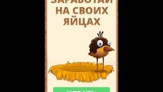 Rich-Birds: заработай на своих яйцах Урок #1