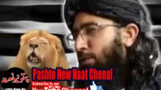 Video MUFTI NADEEM SHAIB NEW NAZAM PASHTO NEW NAAT 2018 (مه چیڑا باطله دہ حنفیانو سرہ مه چیڑہ) download MP3, 3GP, MP4, WEBM, AVI, FLV Juli 2018
